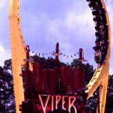 The Viper's 76-foot vertical loop at SFOG
